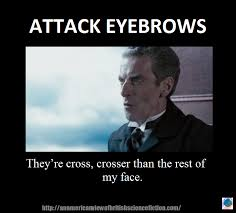 Eyebrows Meme - the monday meme independent state of eyebrows arcadia pod