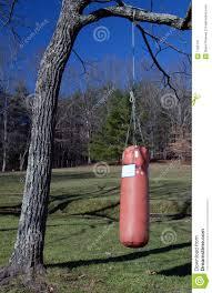 boxing heavy bag stock image image of tree heavy boxing 1765141