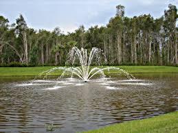 Decorative Pond Aquamaster Decorative Pond Fountain 5 Hp 240v Masters Series