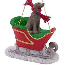 weimaraner sleigh ornament home kitchen