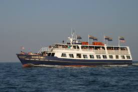 are there any cruises offered in the shores islands area