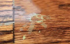 finish flaws avoid common wood floor finish failures wood floor
