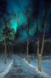 norway northern lights hotel wintery night northern lights just pics i like pinterest