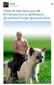 Missing Cat Meme - internet not much help finding chechen leader s missing cat bbc news