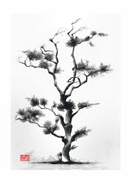 tree in from by sedighe d6upbfs jpg 3072 4344 for