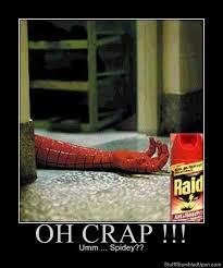 Raid Meme - demotivational posters meme spiderman meme raid spiderman death dead