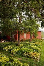 Cheap Backyard Landscaping Ideas by Backyards Wondrous Backyard Garden Ideas Photos Small Backyard