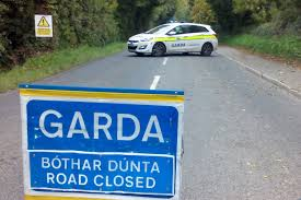 lexus of ireland elderly couple who died in yesterday u0027s crash were life and soul of