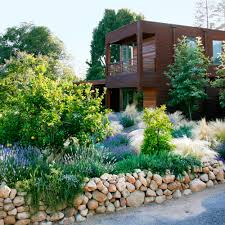 native plant landscaping designing with drought resistant plants sunset