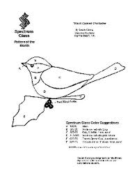 free stained glass pattern 2056 black capped chickadee patterns