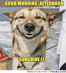 Good Morning Sunshine Meme - good afternoon meme good morning afternoon sunshine picsmine