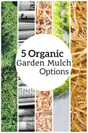 best 25 garden mulch ideas on pinterest garden ideas organic