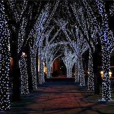 solar powered fairy lights for trees 17 meter string of 100 led solar powered fairy lights solar power