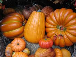 what s open to eat on thanksgiving blog mclennan contracting