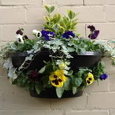 wall mounted planters wall planters 50cm x 20cm mirror garden