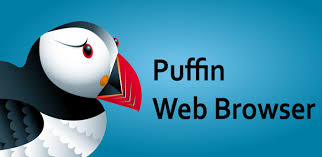 puffin pro apk puffin browser pro 7 0 6 18027 apk for android aptoide