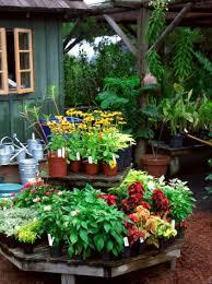 plant nursery u0026 landscaping supply com