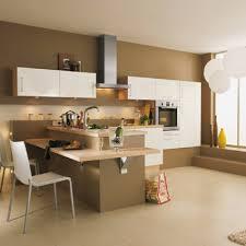 peinture pour cuisine couleur pour cuisine awesome awesome and beautiful peinture pour