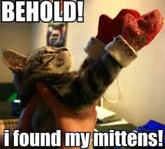 Funny Kitten Meme - 25 funny cat memes that will make you lol
