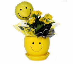 Smiley Face Vase Blooming Plants Delivery Southfield Mi Thrifty Florist