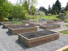 garden and patio vegetable garden layout raised beds with wood