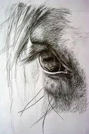 modele d u0027un cheval pour une peinture sur toile equus pinterest