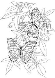 coloring pages adults coloring pages printable