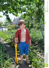 young boy working in the vegetable garden stock image image