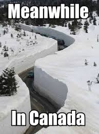 Canada Snow Meme - the funniest snow memes ever aww hell naw pinterest memes