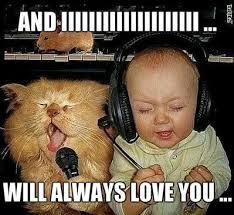 So In Love Meme - i love u meme funny memes about love