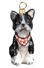 500 best all boston terrier stuff images on boston