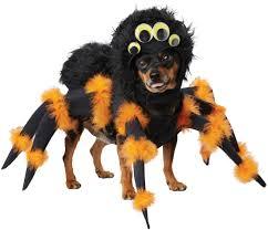 scary halloween spider pup dog costume costume craze