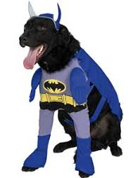Dog Minion Halloween Costumes Superhero Costumes Dogs Costume Craze