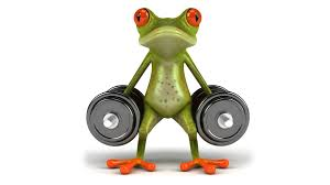 download wallpaper graphics frog dumbbell free frog sport