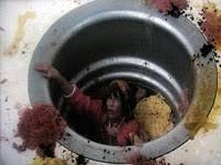 Best Ways To Get Rid Of Fruit Flies GETRIDOFTHiNGSCOM - Small flies in kitchen sink