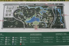Olympic Forest Park Beijing U2013 Birding Beijing 北京观鸟