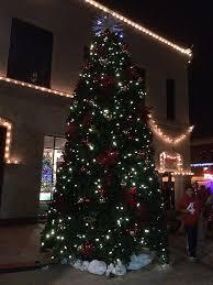christmas lights riverside ca christmas tree christmas tree