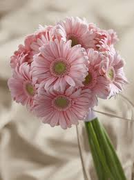 pink gerbera bouquet interflora wedding favors flowers venue