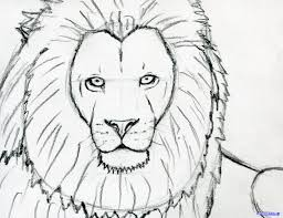 lion easy drawing face drawing sketch