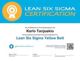 Six Sigma Black Belt Resume Examples by Six Sigma Black Belt Resume Examples Free Resume Example And
