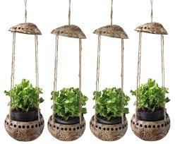 amazon com exotic elegance 4 pieces garden decorative coconut