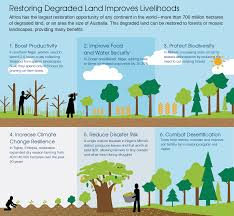 african countries aim to restore 100 million hectares of degraded