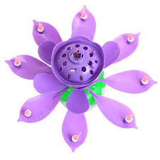 lotus birthday candle birthday candles beautiful musical lotus flower home decor pearls