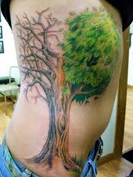 tree on ribs in 2017 photo pictures