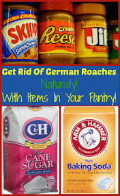 rid of german roaches naturally