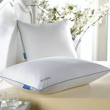 Pillow For Reading In Bed Pillows Down U0026 Body Pillows