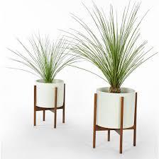 floor plants home decor floor plants planters inspiration scadpad pinterest floor