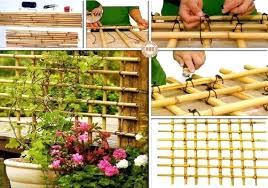 garden trellis design ideas the garden inspirations