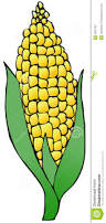 ear of corn clipart china cps