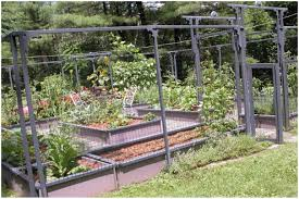 backyards backyard vegetable garden designs backyard ideas
